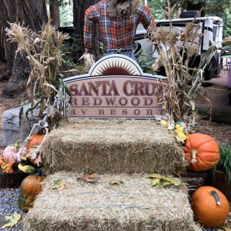 SCRRV Thanksgiving Potluck